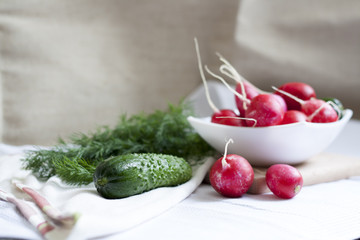Cucumbers, radishes and herbs