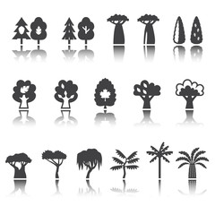 Trees icon set. Silhouette. Shadow reflection.