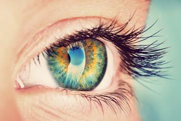 Photo sur Plexiglas Iris eye