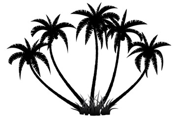 Palm trees silhouette on white background, vector illustration