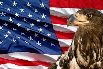 Deurstickers Eagle American Flag, Flag, Backgrounds.