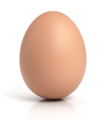 Brown chicken egg on white