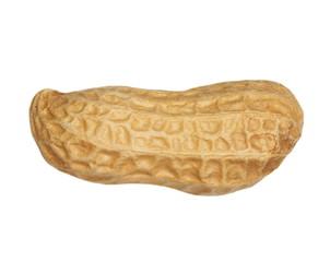 macro of peanut isolated on white