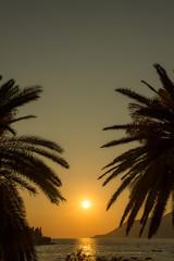 Sonnenuntergang am Strand, zwischen zwei Palmen