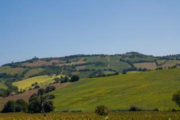 Colline marchigiane , Marche, Italia
