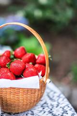 Fresh strawberries in a basket