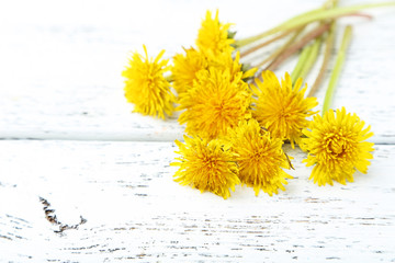 Yellow dandelion on grey wooden background