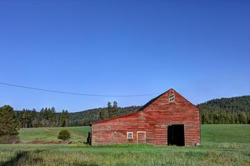 Barn in green field.