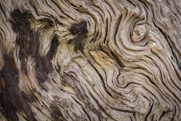 Wood floors, wood, old, texture, pattern, wooden planks.