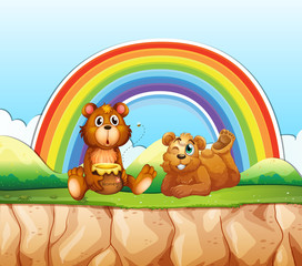 Bears and rainbow