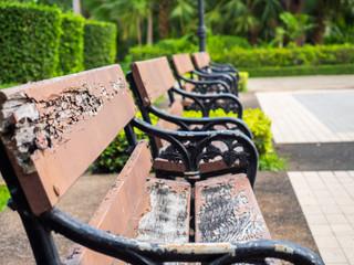 Decayed bench in garden