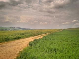 Feldweg durch eine Landschaft mit Feldern