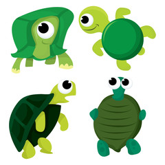 Turtle and Tortoise