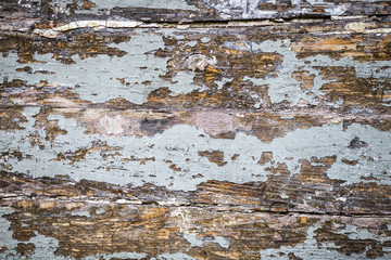 Old wood plank.