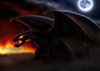 Dragon / Dragon is illumined light of fire and moon