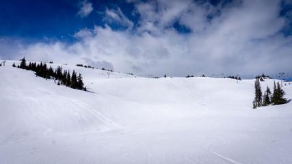 Wall Mural - Ski slopes in the High Alpine of the ski resort of Sun Peaks