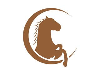 clasic horse