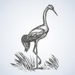 Crane. Vector drawing