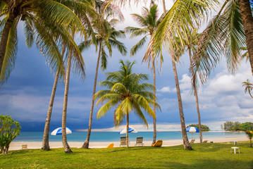 Wall Mural - Tropical beach with palm trees, dramatic sky with dark clouds