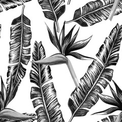Tropical floral black and white seamless background