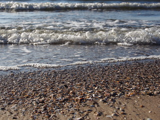waves and shells