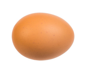 Brown egg on white
