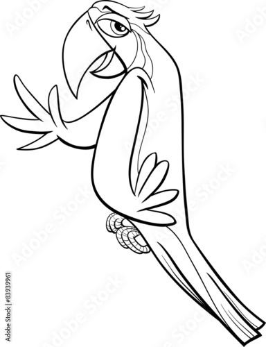 macaw parrot coloring page stock image and royalty free vector