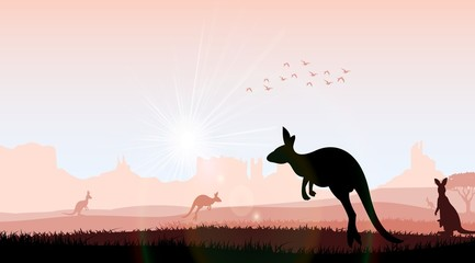 Silhouette kangaroo in the evening. Vector