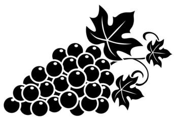 Weinrebe, Weintrauben, Icon, schwarz-weiß, Vektor, freigestellt