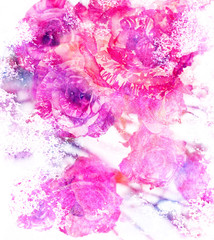 Watercolour toned roses greeting card