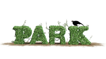 park - logo from ivy leaves - separated on white BG