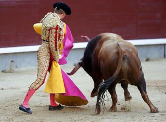 Photo sur Plexiglas Corrida bull in the bullring