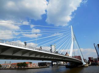 Erasmus Bridge (Erasmusbrug), Rotterdam, The Netherlands