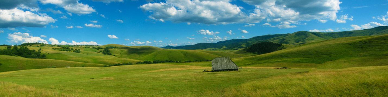 Panoramic view of Zlatibor mountain
