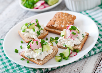 Sandwich with cottage cheese, radish, black pepper and cucumber