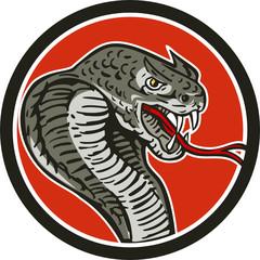Cobra Viper Snake Circle Retro