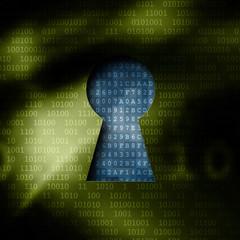 Schlüsselloch zeigt entschlüsselte Daten