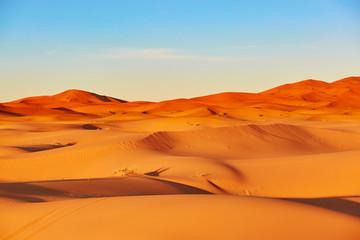 Foto auf AluDibond Wuste Sandig Sand dunes in the Sahara Desert
