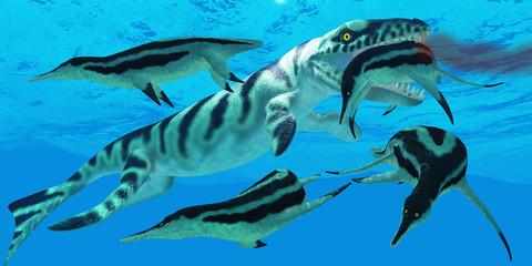 Dakosaurus Marauder