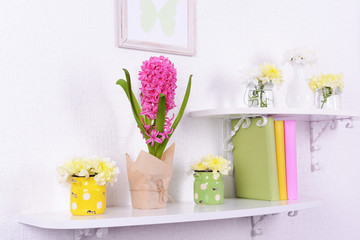 Flower on shelves on white wall background