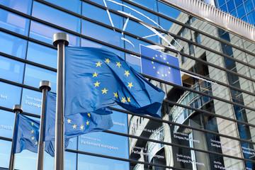 European Union flag against European Parliament Wall mural