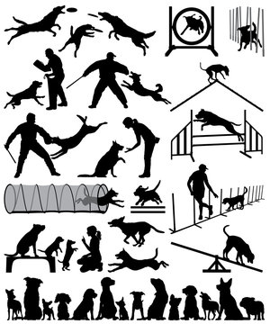 Editable vector silhouette of dogs training