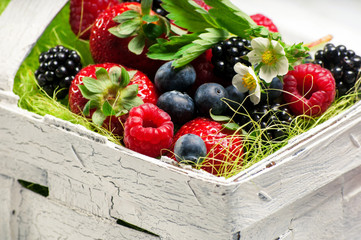 Berry Mix in basket