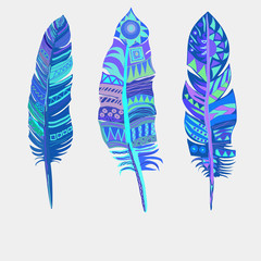 Bright colored feathers. Tribal Ethnic, vectors