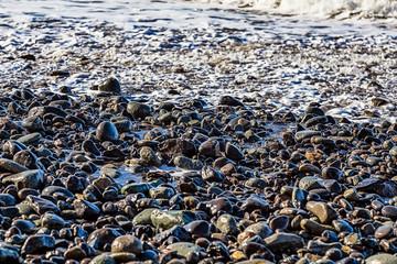 Stones in white foam on the beach