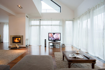 Big exclusive living room