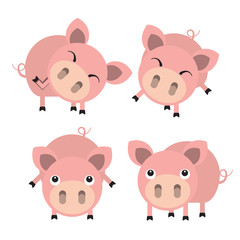 Four cute cartoon pigs. Vector illustration