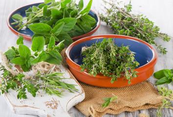 Variety fresh green mediterranean herbs.