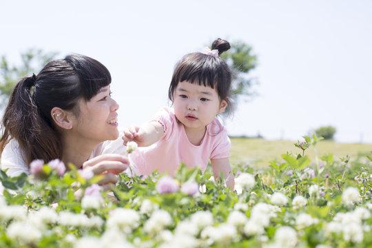 草原で遊ぶ親子