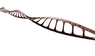 DNA Strand Micro